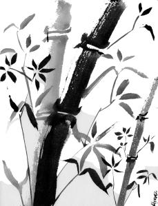 bambus-final-web